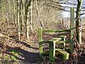 Footpath to Pyrford Green - geograph.org.uk - 642797.jpg