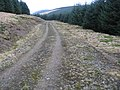 Forest track at Crookedstane Rig - geograph.org.uk - 669671.jpg