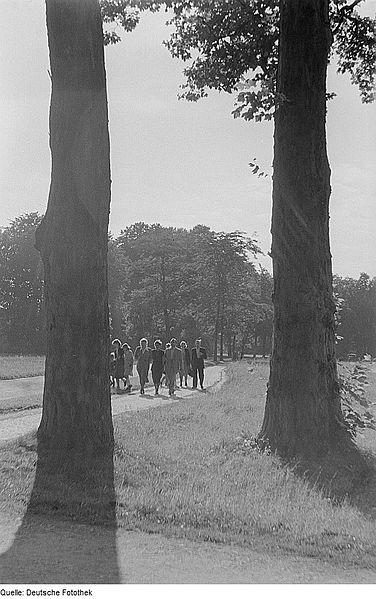 File:Fotothek df roe-neg 0006342 012 Spaziergänger im Park von Sanssouci.jpg