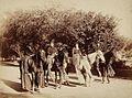 Four pāʻū riders, ca. 1880s.jpg