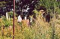 France Loir-et-Cher Festival jardins Chaumont-sur-Loire 2003 Abondonment.jpg