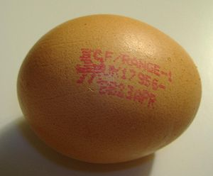 Free-range eggs - A free-range egg purchased in the UK.