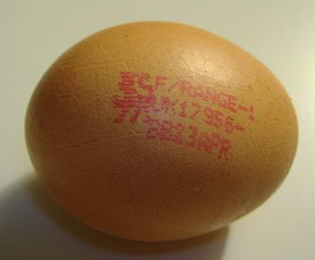A free-range egg purchased in the UK.