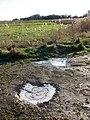 Frozen puddles - geograph.org.uk - 1110292.jpg