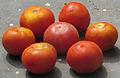 Fruit tomato.jpg