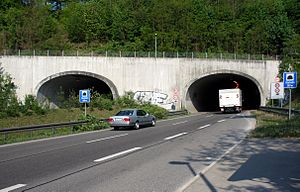 Gäubahntunnel