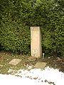 Göttingen-Grave.of.Otto.Hahn.jpg