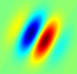 Simple cell - Gabor filter-type receptive field typical for a simple cell. Blue regions indicate inhibition, red facilitation