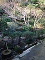 Garden near Tsukubai of Chisoku in Ryoanji Temple 2.jpg
