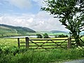 Gate - geograph.org.uk - 476329.jpg