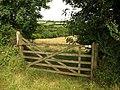 Gate near Herodsfoot - geograph.org.uk - 891645.jpg