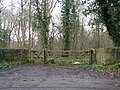 Gateway into woodland - geograph.org.uk - 1802324.jpg