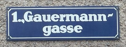 How to get to Gauermanngasse with public transit - About the place