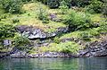 Geiranger, rocky shore of the fjord.jpg