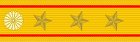 Shoulder insignia