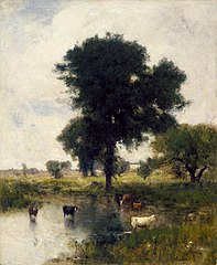 Cattle in Pool (A Summer Landscape)