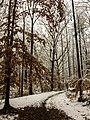 Georgia snow IMG 4482 (25075414738).jpg