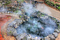 Gfp-arkansas-hot-springs-steam-from-spring.jpg