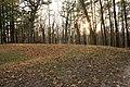 Gfp-iowa-pikes-peak-state-park-bear-mound.jpg