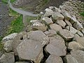 Giant's Causeway (7) - geograph.org.uk - 817058.jpg