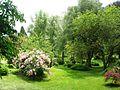 Giardino di Ninfa 5.jpg