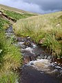 Gill Beck - geograph.org.uk - 1430107.jpg