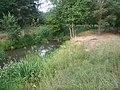Gmina Kożuchów, Poland - panoramio - amiga33.jpg