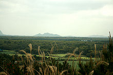 Gotjawal Forest on Jeju Island-01.jpg
