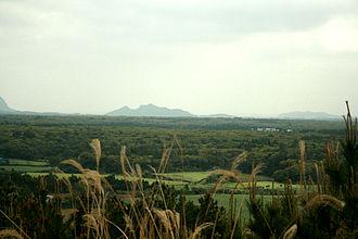 Gotjawal Forest - Image: Gotjawal Forest on Jeju Island 01