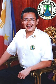 2013 Laguna local elections