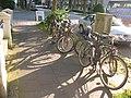 Graf-Adolf-Str.18, überfüllter Fahrradständer, 13. 06. 2009 - panoramio.jpg