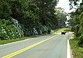 Gramado - RS, Brazil - panoramio (2).jpg