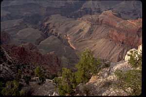 Grand Canyon National Park GRCA4278.jpg