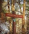 Grassy Hollow Road (1) (31090496943).jpg