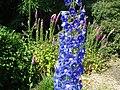Gravetye Manor Gardens - geograph.org.uk - 21232.jpg