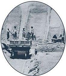 Guano - Wikipedia