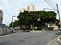Guarulhos, R. Machado de Assis - panoramio.jpg