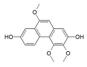 Phenanthrenoid - Chemical structure of gymnopusin, a chemical compound found in orchids.