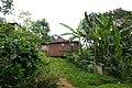 Habitations à São João dos Angolares (São Tomé) (15).jpg