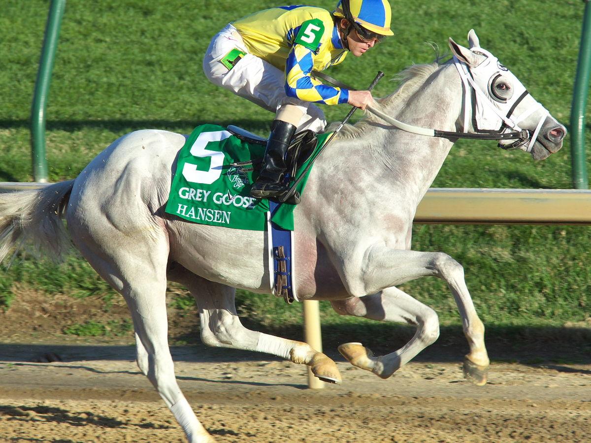 Hansen (horse) - Wikipedia