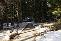 Harrachov - park sanatoria čp. 128.jpg