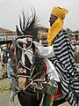 Hausa traditional horse outfit.jpg