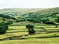 Haymaking at Thwaite - geograph.org.uk - 524457.jpg