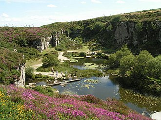 Ilsington - The Haytor quarries