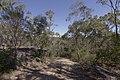 Heathcote NSW 2233, Australia - panoramio (59).jpg