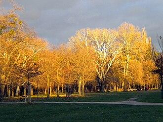 Prater - Prater's Jesuitenwiese in autumn