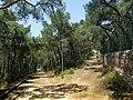 Heybeliada - panoramio (21).jpg