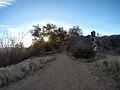 Hiking Towsley Canyon (11675279376).jpg