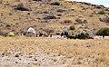 Himba village, Namibia (2014).jpg