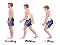 Home Care Standing Walking Lifting.png